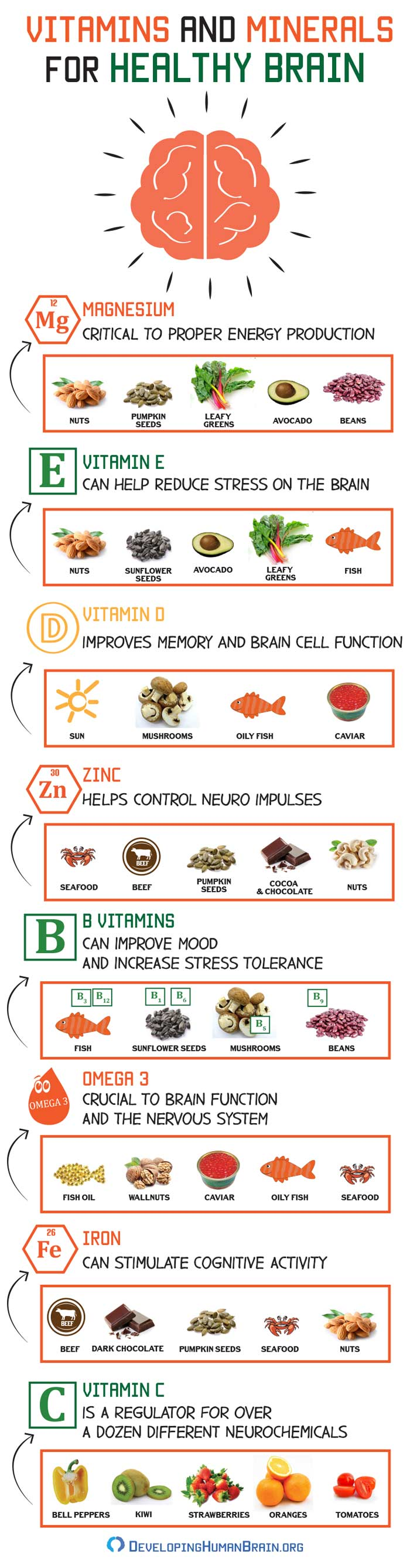 Vitamins For Your Brain Health And Where To Find Them Infographic