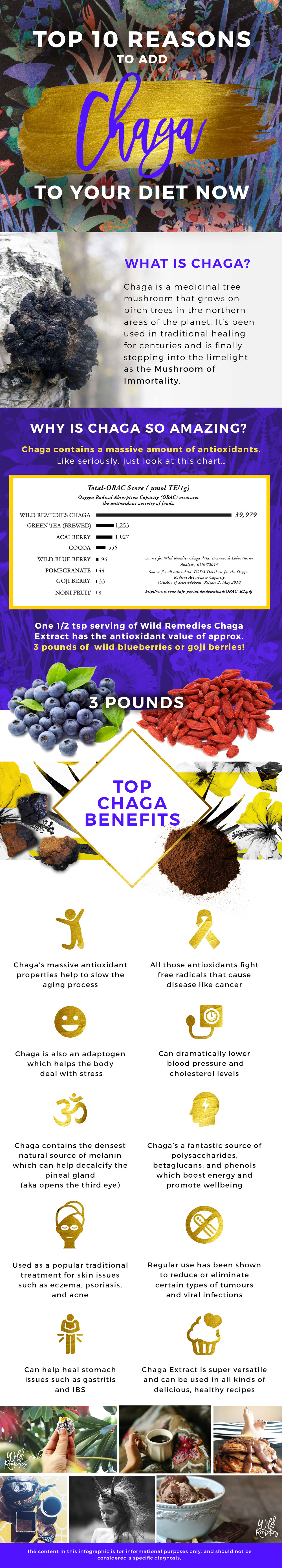 Learn What Is Chaga And Why It Needs A Place In Your Diet Infographic