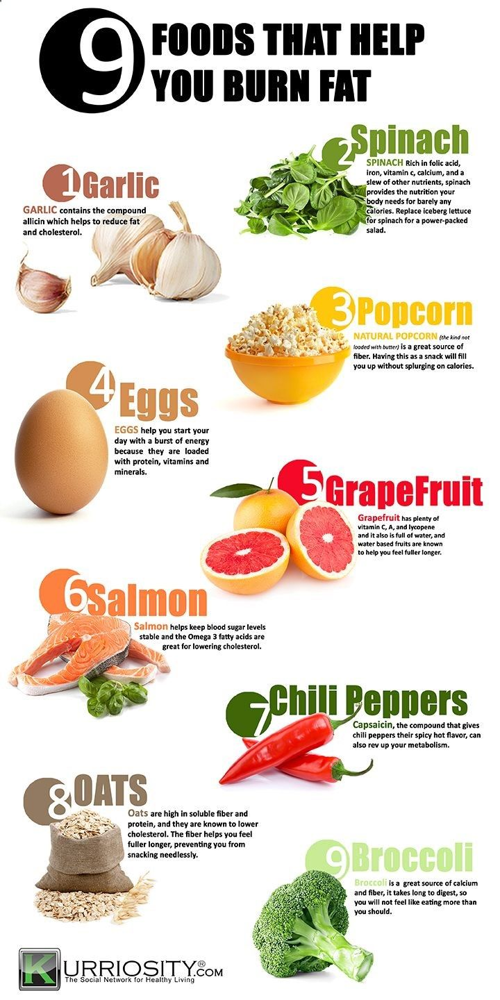 Trying To Lose Weight? These 9 Foods Should Be On Your Grocery List Infographic