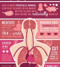 Your Comprehensive Guide To Natural Body Cleanse (Detox) Infographic