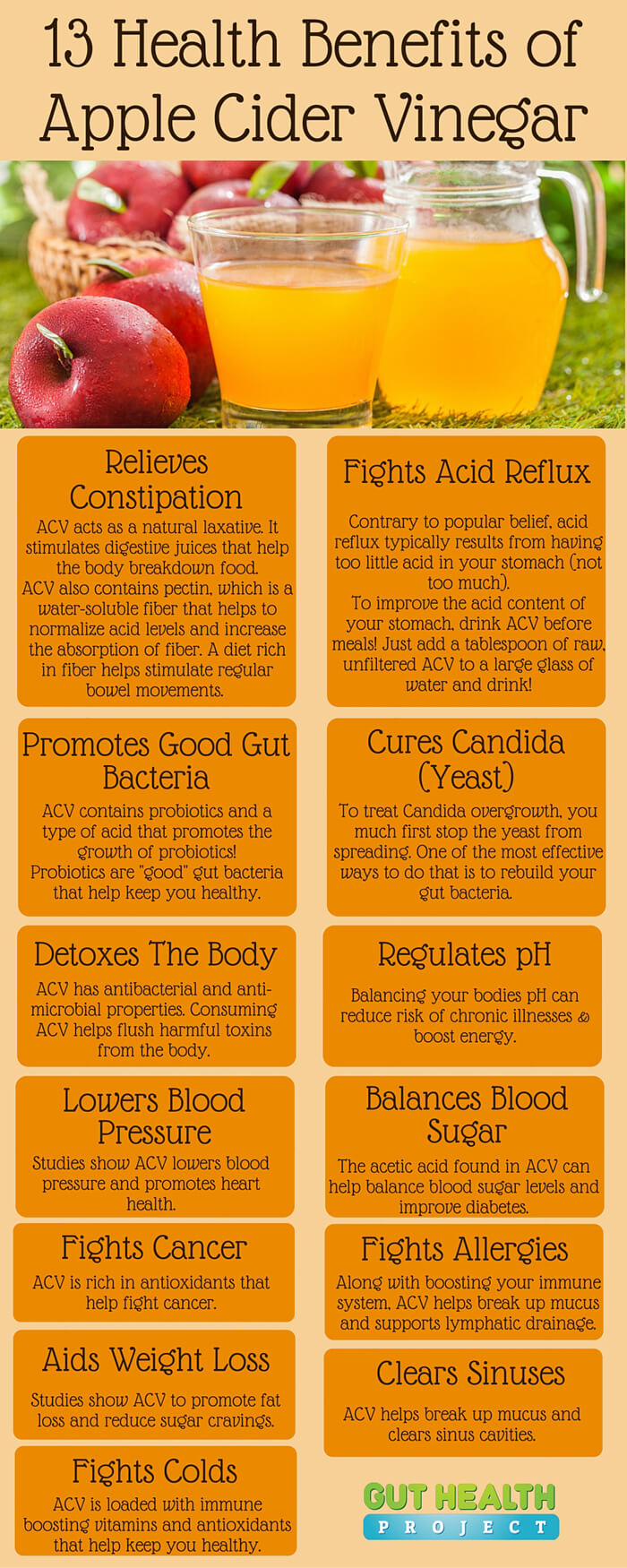 13 Amazing Reasons To Use Apple Cider Vinegar For Your Health Infographic