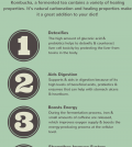 5 Amazing Health Benefits Of Drinking Kombucha Infographic