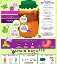 What Is Kombucha And How To Make It At Home Infographic