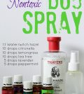DIY Nontoxic Bug Spray Recipe To Solve All Your Mosquito Problems Infographic