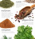 Grill With A Thrill: The Best Grilling Spices To Use Infographic