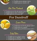 Learn How To Use The Power Of Ginger For Your Hair Infographic