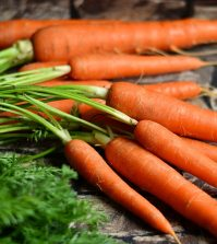 Amazing Facts About Carrots You May Not Be Aware Of Video