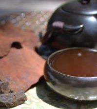 He Shou Wu – A Famous Longevity Tonic Herb Video