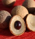 What Is Longan Fruit And How Can It Be Beneficial For You? Video